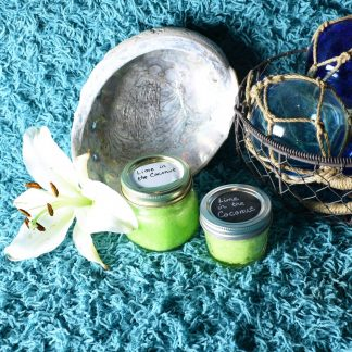 sugar goddess sugar scrubs, sugar scrubs, lime in the coconut, lime sugar scrub